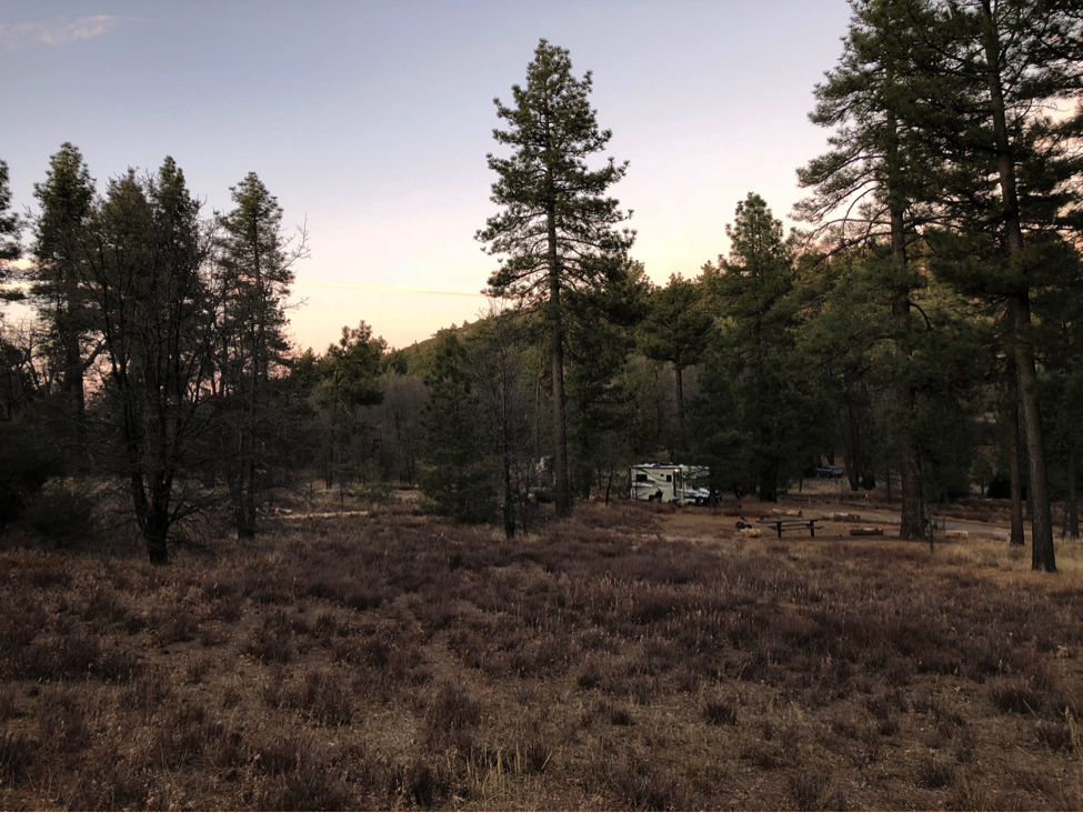 Mt. Laguna Campsite Roadside Loop #87A