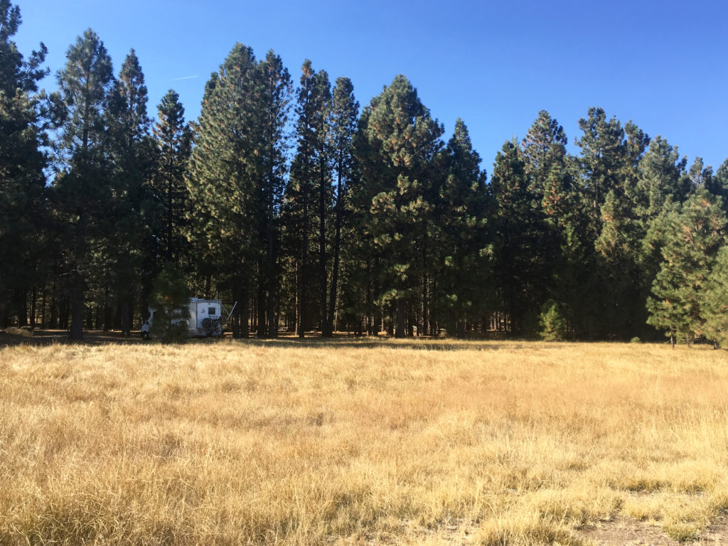 Merrill Campground on Eagle Lake, Susanville, CA