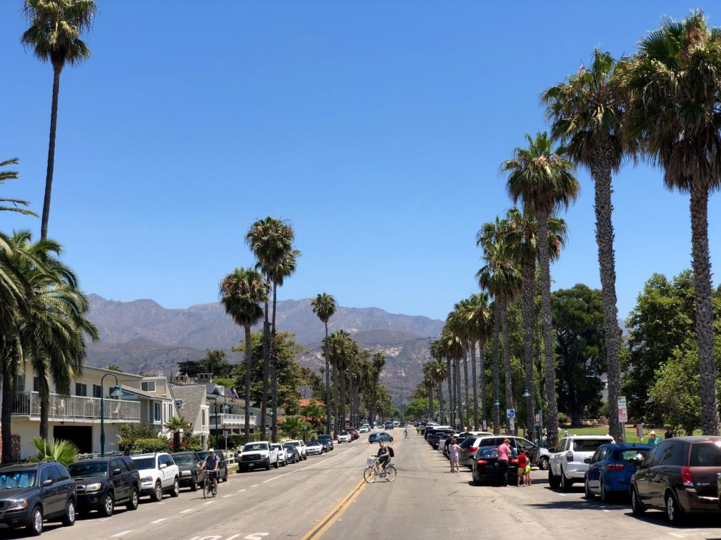 palm trees along street and mountains in distance