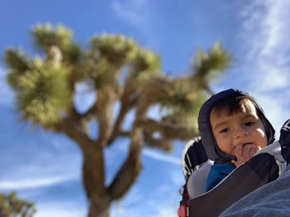 toddler riding on adult's back during hike