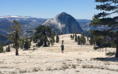 View of Half Dome from Mt Watkins