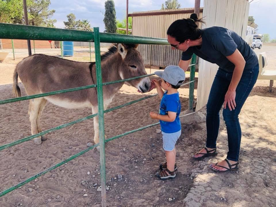 Harvest Hosts RV Camping With Petting Zoo